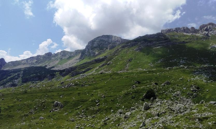 MOUNTAIN BIKE SCENERY!